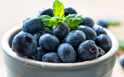 What is an Antioxidant? Will Eating this Help Me Lose Weight??